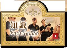 skill#knowledge